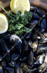 Moules, citron.