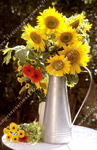 Bouquet de tournesols, pot fer blanc.