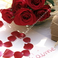 Bouquet de roses rouges, message Saint Valentin.