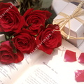 Bouquet de roses rouges, Saint Valentin.